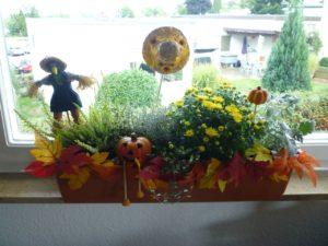 Herbstliche Blumenkästen
