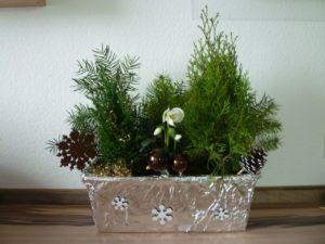 Weihnachtliche Kästen