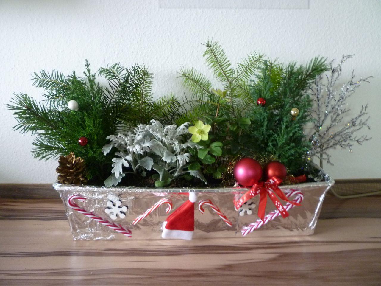 Blumenkasten Weihnachtlich Dekorieren weihnachtliche blumenkästen die bastelemma